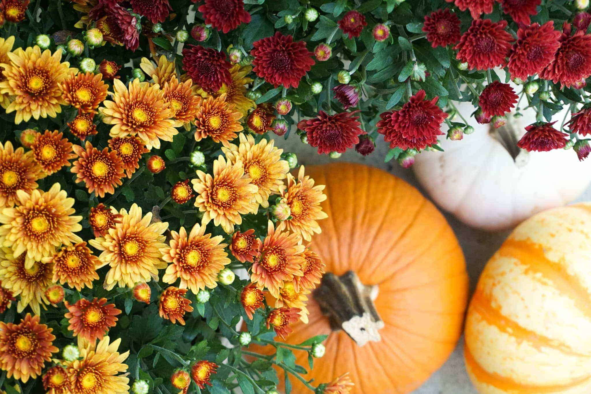 Outdoor fall decorating ideas.